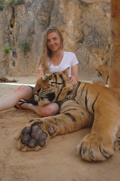Tiger on her lap in Thailand