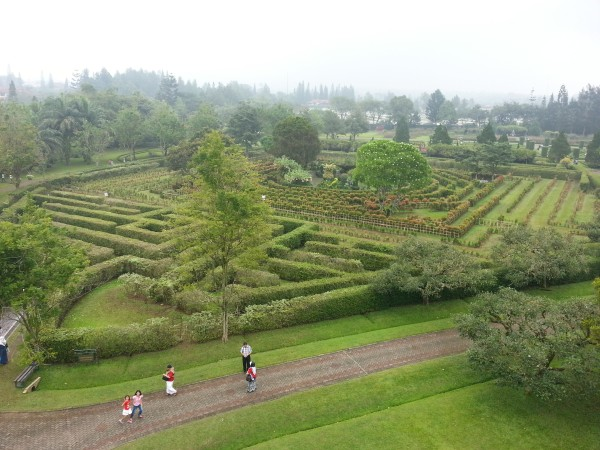 The kids could have spent another hour or two here enjoying the garden. They really liked doing this maze