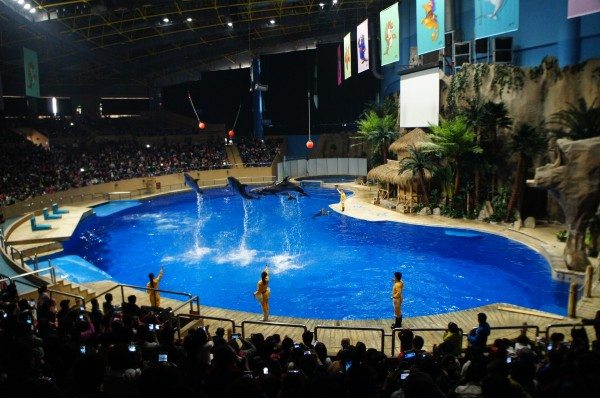 The sea lion, dolphin, whale show was also pretty cool