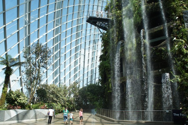 "Cloud Forest with the tallest ""indoor man-made waterfall"""