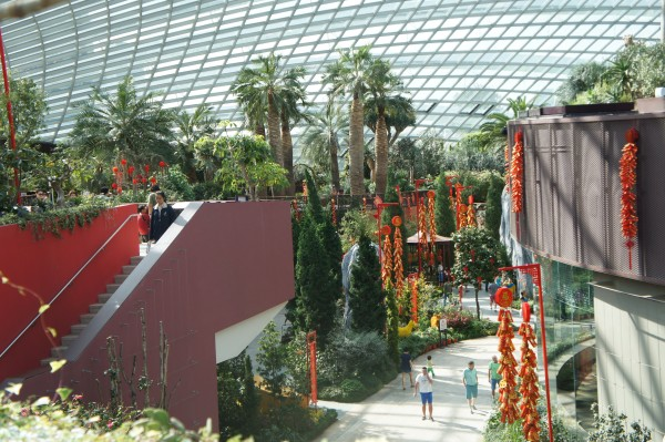 The Flower Garden was decorated for the upcoming Chinese New Year