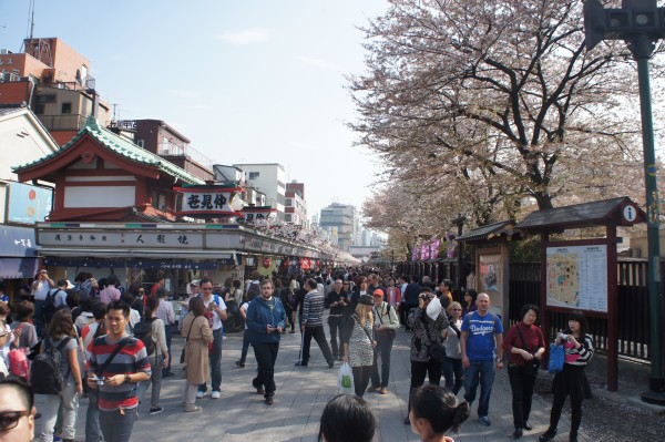 Just outside the gate of Sensoji Temple is a large souninir shopping area.