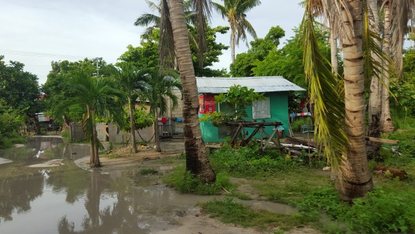 We rented a motor bike and drove around the island of Malapascua. Not many roads are paved.