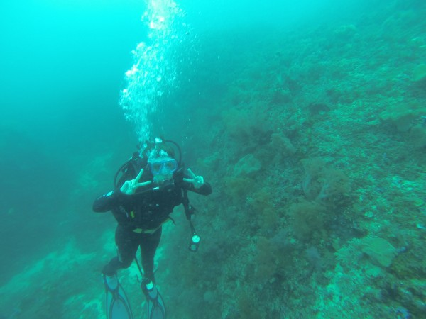 After seven dives in less than 48 hours we are now certified to dive down to 30 meters 100 feet).