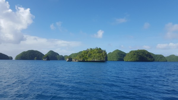Palau is beautiful with hundreds of these small islands in the middle of the ocean.