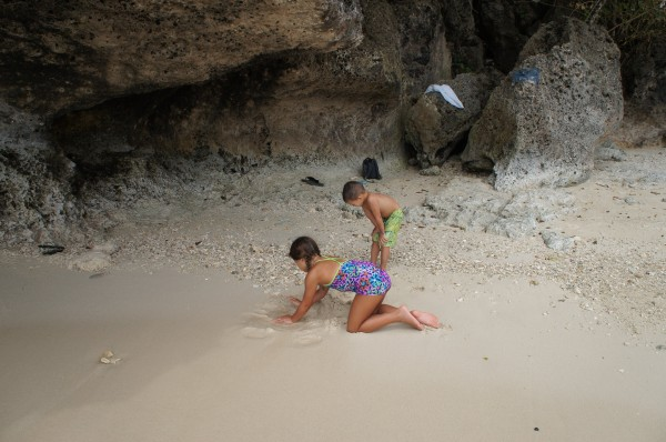 The kids loved playing on the beach, exploring the area and finding sea shells