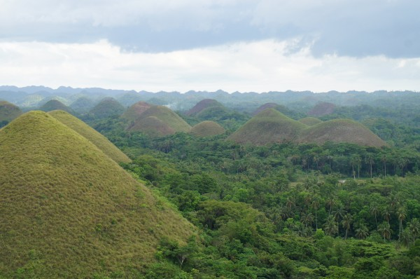 Chocolate Hills of Bohol...what the island is known for
