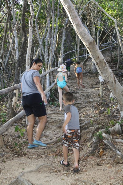 Taking a hike around the resort.  Our destination was a look-out tower to see some fruit bats