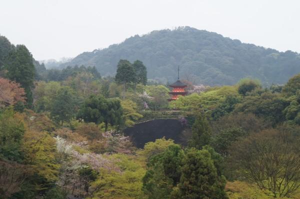 Lovely Kyoto.