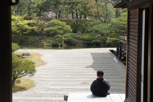 Even Mason can sit and and meditate in Kyoto.