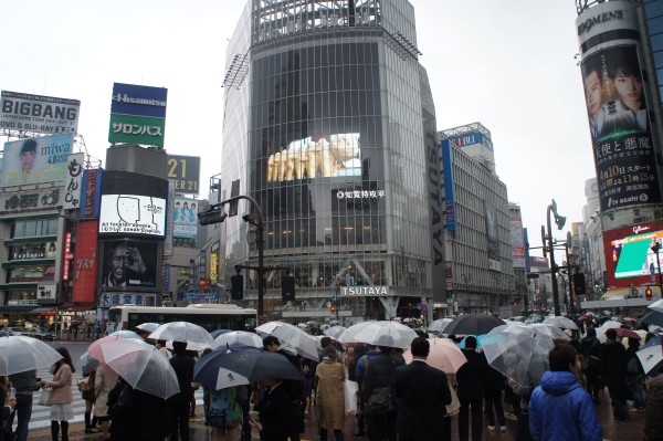 We got to experience the Shibuya Scramble at this crazy intersection.