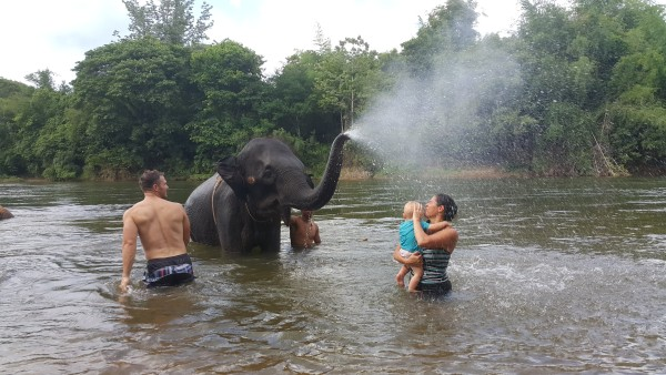 Kalani didn't want to get wet, but we did take Blake out in the water and he got cooled off by an elephant.