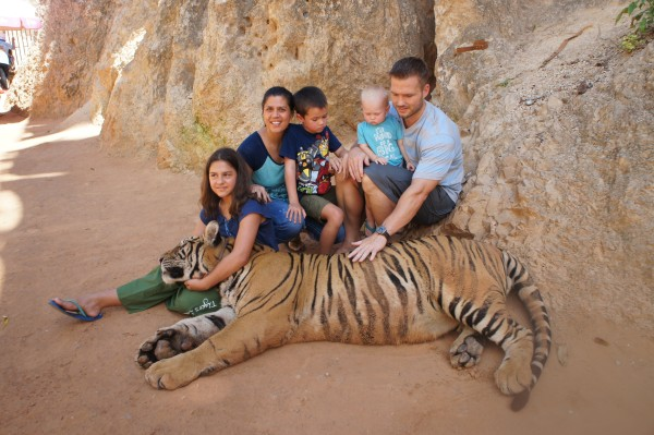 """We went back to the Tiger Temple. I was a little nervous to have our """"not yet one year old"""" baby next to a big tiger, but it was fine."""