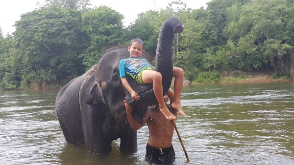 """Mason really had a great time with the elephants. He even did some """"cannon balls"""" off of the elephant's head and basically saw the elephant as a """"jungle-gym"""""""