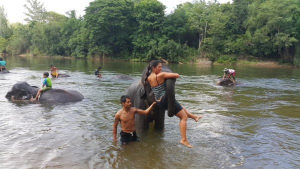 We ended the day by bathing and playing with elephants.