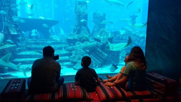 """We had time to spare in the afternoon, so we went to the """"Atlantis"""" hotel and walked around their aquarium."""