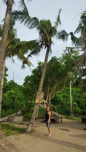 We found this make-shift basketball hoop nailed to a coconut tree.