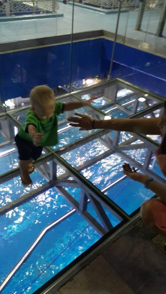 Blake wasn't sure about this glass flooring where there were large fish (maybe some sharks) underneath.