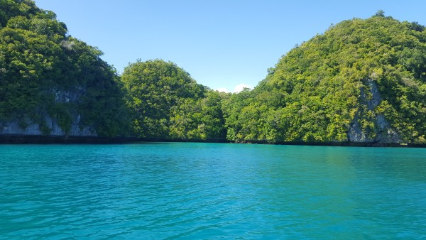 One day we were able to have lunch on the boat in this area that was secluded and peaceful.